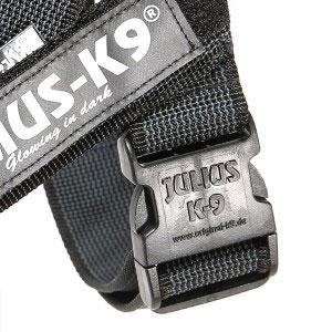 buckle-300x300
