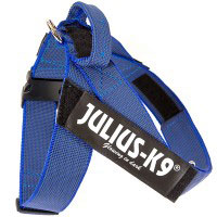 color-and-gray-belt-harness-blue-200x200