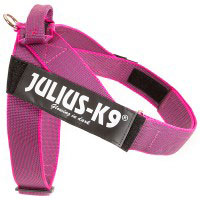 color-and-gray-belt-harness-pink-200x200
