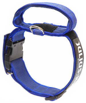 color-and-gray-collar-with-handle-blue-300x358
