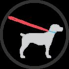lumino-adjustable-leash-pictogram-140x140