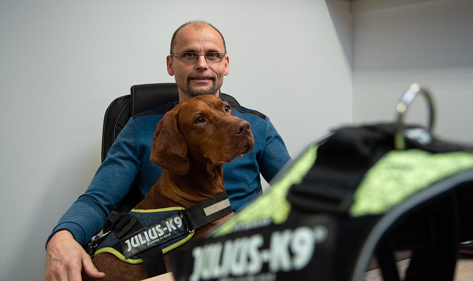 在中国获奖的匈牙利犬用胸背带